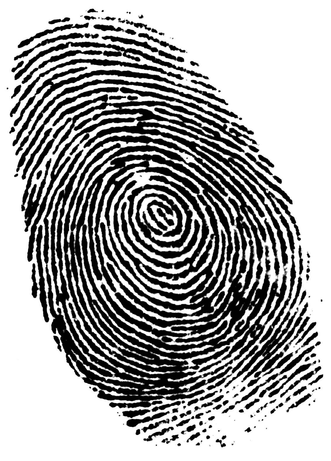 thumb print authentication