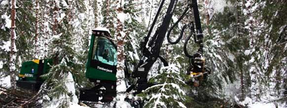 forestry-m2m-sweden