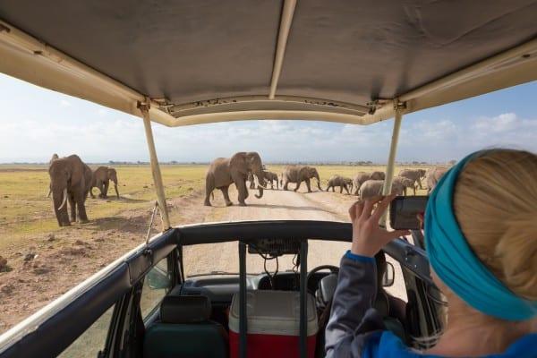 Woman taking photos on african wildlife safari. Amboseli, Kenya.