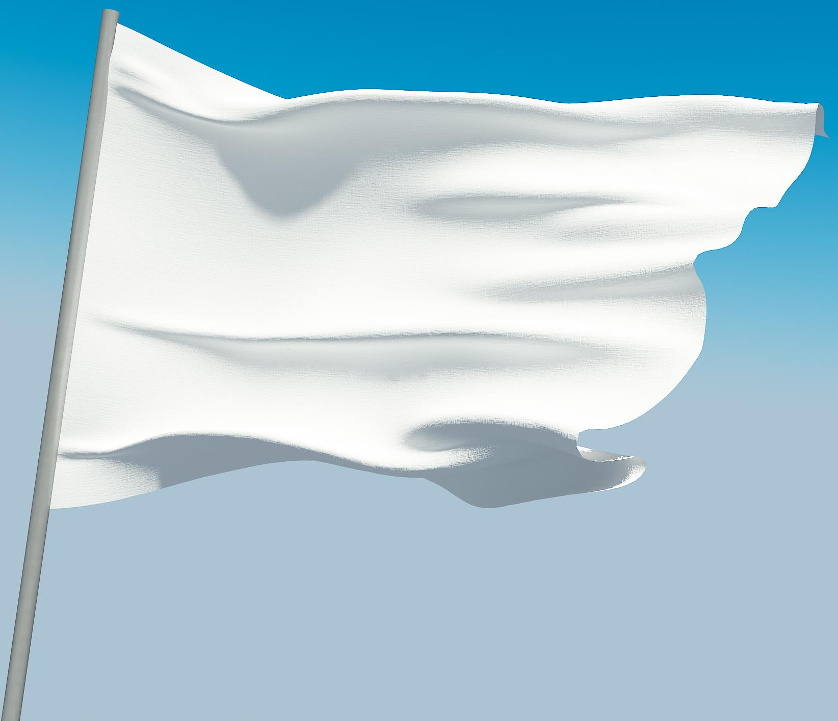 Image result for white flag